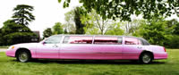 pink limousine hire essex