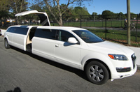 honeymoon limousine rental
