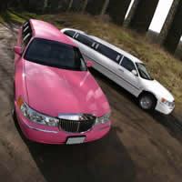 Race Day limo hire